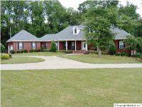 Home for sale: 190 Damaris Dr., Albertville, AL 35950