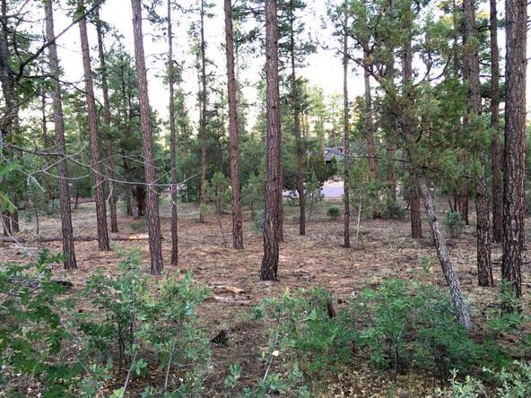 300 W. Creekwood Ln., Show Low, AZ 85901 Photo 13
