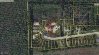 Home for sale: 11823 Raintree Dr., Panama City, FL 32404