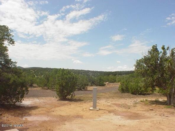 1b N. 8690, Concho, AZ 85924 Photo 2