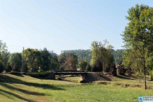 155 Village Springs Cove, Springville, AL 35146 Photo 30