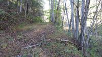Home for sale: Whitson Branch Rd., Green Mountain, NC 28740