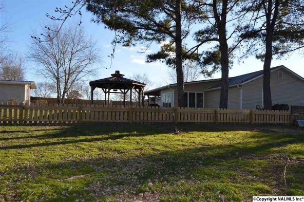 64 County Rd. 531, Moulton, AL 35650 Photo 44