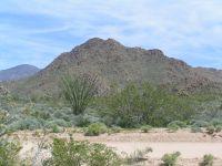 Home for sale: 725 S. Geronimo Rd., Yucca, AZ 86438