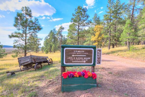 8100 W. Dk Ranch Rd., Flagstaff, AZ 86005 Photo 33