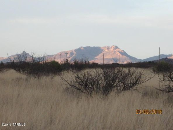 40 Acres S. Kuykendall & E. Shamrock Ln., Pearce, AZ 85625 Photo 14