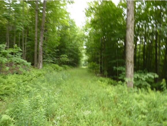 Lot 3 Overlook Dr., Westmore, VT 05860 Photo 3