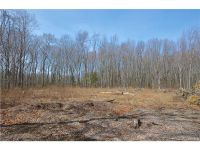 Home for sale: Lot 01g Ctr. Rd., Woodstock, CT 06281