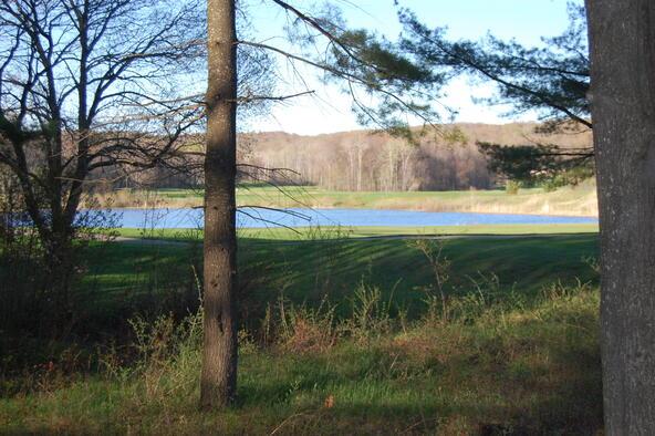 4345 Arthur Hills Dr., Harbor Springs, MI 49740 Photo 11