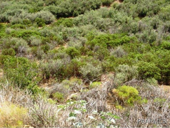 12991 E. Oak Hills Trail, Mayer, AZ 86333 Photo 23