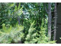 Home for sale: 850 Sinti Trail, Big Canoe, GA 30143
