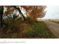 Home for sale: E. Knoll, Portland, MI 48875