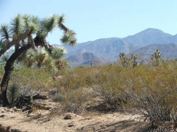 3529-C Arroyo Rd., Yucca, AZ 86438 Photo 8