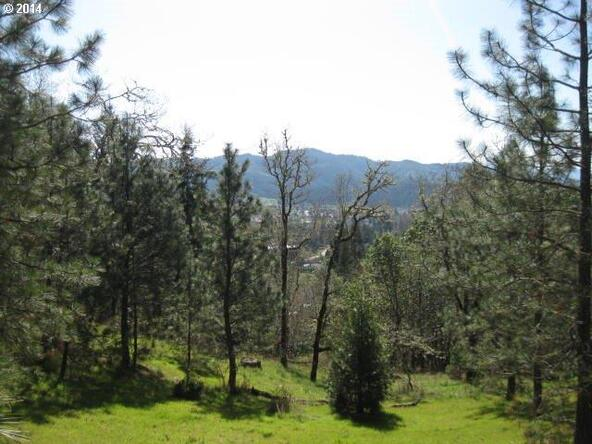 433 N.E. Spring View Dr., Myrtle Creek, OR 97457 Photo 4