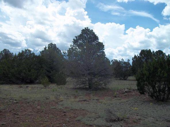 1142 E. Alimos Way, Williams, AZ 86046 Photo 9