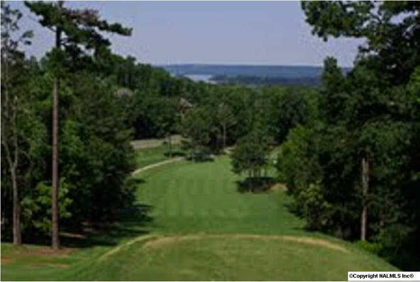 34 Harbor Ridge Rd., Guntersville, AL 35976 Photo 4