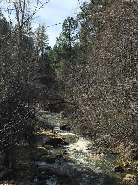 220 W. Zane Grey Cir., Christopher Creek, AZ 85541 Photo 59