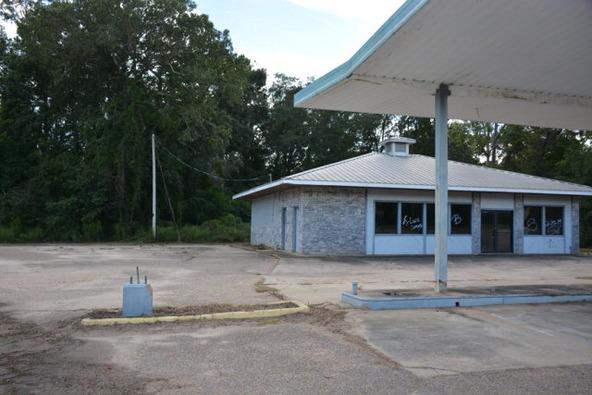 2590 Hwy. 84, Daleville, AL 36322 Photo 17