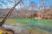 Home for sale: 0 Perry Bend Rd., Duck River, TN 38454