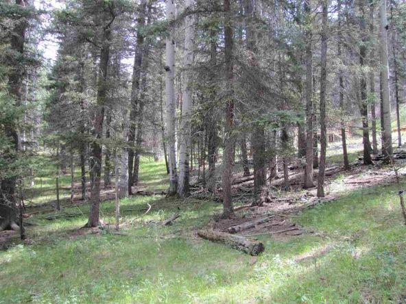 119 W. Pecos Canyon Estates Rd., Tererro, NM 87573 Photo 22