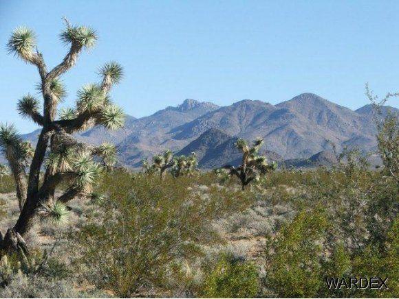 3529-D Arroyo Rd., Yucca, AZ 86438 Photo 22