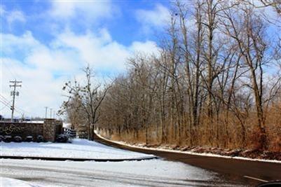 3892 Real Quiet Ln., Lexington, KY 40509 Photo 4