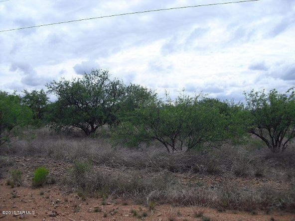 16005 Ranger Rd., Arivaca, AZ 85601 Photo 9