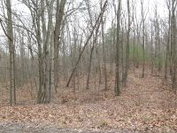 Home for sale: 0 Primrose Dr., Hesston, PA 16647