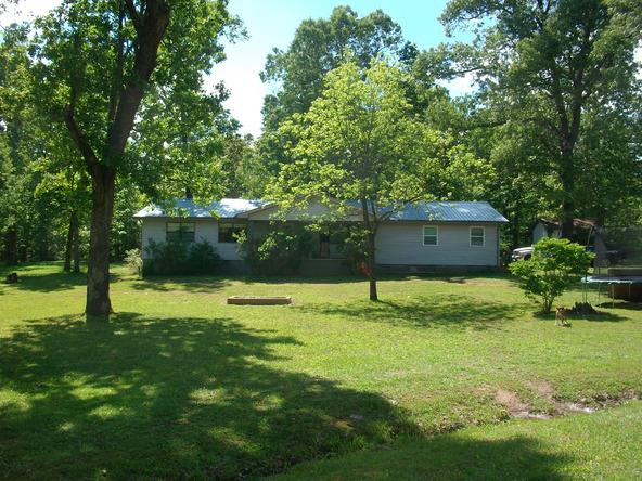 52 White Oak Cir., Highland, AR 72542 Photo 2