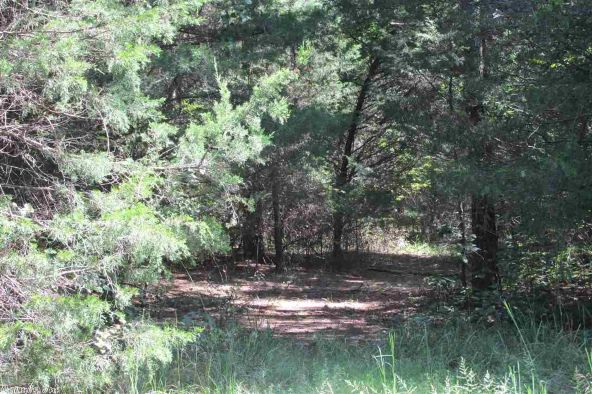 3.5 Acres Ravine Rd. & Mocking Bird Ln., Tumbling Shoals, AR 72581 Photo 3