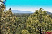 Home for sale: Tbd Cadillac Canyon, Durango, CO 81301