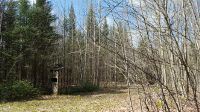 Home for sale: Big Marsh Rd., Ocqueoc, MI 49759