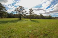 Home for sale: 0 Us Hwy. 19, Zebulon, GA 30295
