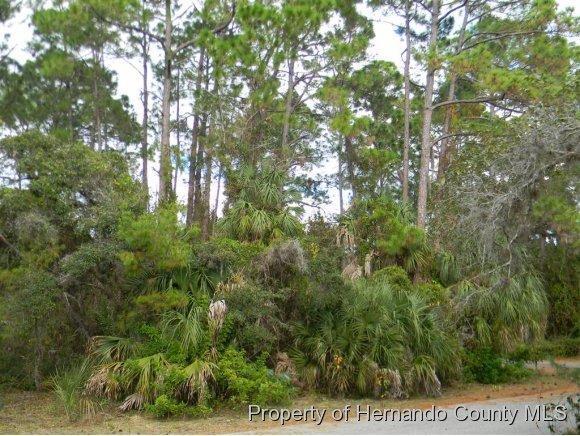 8292 Driftwood Dr., Weeki Wachee, FL 34607 Photo 7