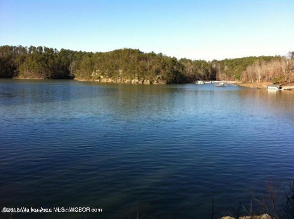 72 & 132 Sipsey Overlook, Double Springs, AL 35553 Photo 1