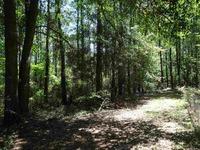 Home for sale: Tbd Clark Cemetery Rd., Monticello, FL 32344