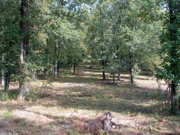 2.51 Acres Hunterscove Dr., Hot Springs, AR 71913 Photo 8
