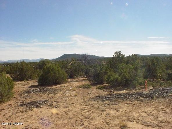 1a N. 8690, Concho, AZ 85924 Photo 50