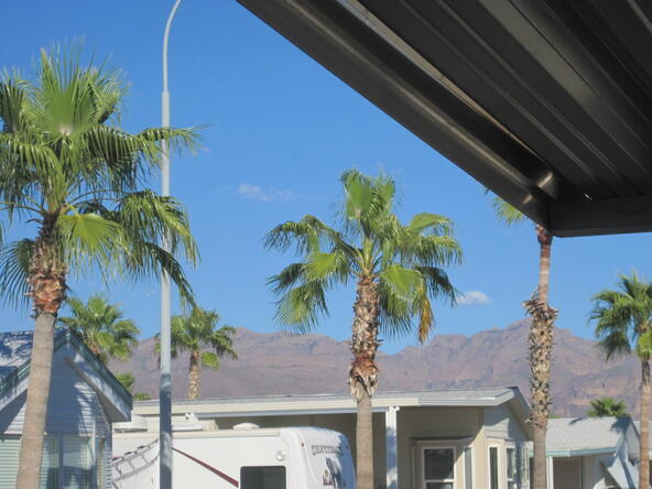 3710 S. Goldfield Rd., # 401, Apache Junction, AZ 85119 Photo 4
