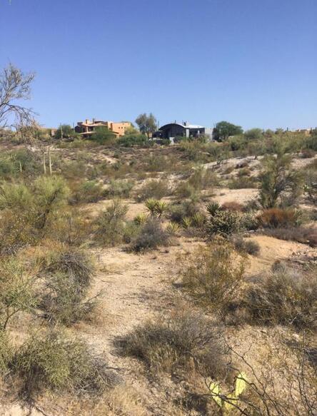 7890 E. Stagecoach Pass Rd., Carefree, AZ 85377 Photo 3