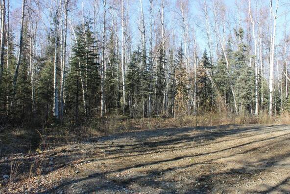 69046 S. Mckinley Vista Loop, Willow, AK 99688 Photo 8