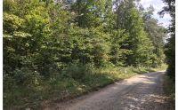 Home for sale: Lt 69 Cherokee Ln., McCaysville, GA 30555