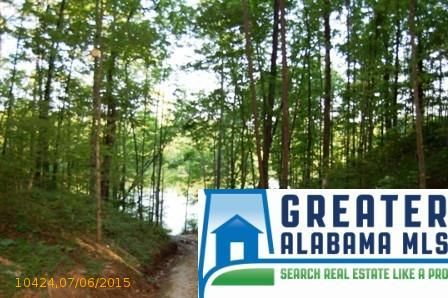 5 Rock Creek Co Rd. 4312, Wedowee, AL 36278 Photo 4