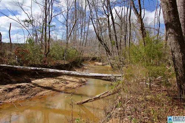 2353 Stallings Rd., Centreville, AL 35042 Photo 9