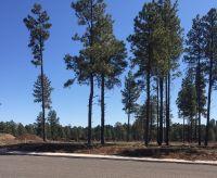 Home for sale: 2599 W. Pollo Cir., Flagstaff, AZ 86001