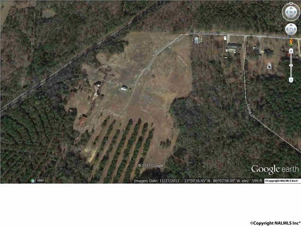 57 Jones Sawmill Rd., Attalla, AL 35954 Photo 3