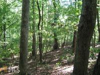Home for sale: 0 Mountain Ranch Rd., Clarkesville, GA 30523