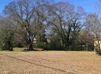 Home for sale: 47 Fair St., Newnan, GA 30263