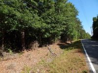 Home for sale: 22588 Hwy. 436, Angie, LA 70426