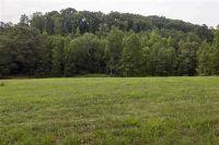 Home for sale: Lot 4 Walnut Grove Church Rd., Dayton, TN 37321